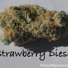 strawberrydiesel