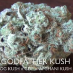 Godfather Kush