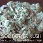 Godfather Kush