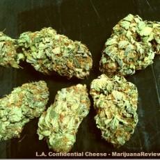 4-6-11-OrganicHero-L.A.ConfidentialCheese1