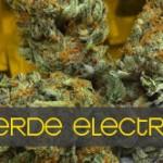 Verde Electric
